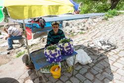 Kaukasus_2019_1024_2170.jpg